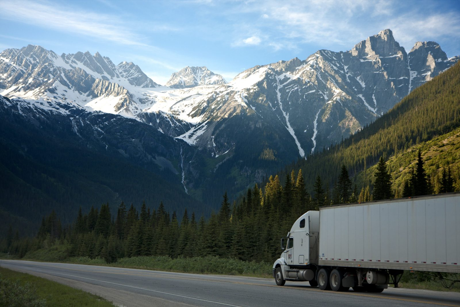 International removals - Friendly Moves Limited